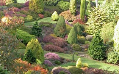 Neuseeland 2005 – Tag 16-22
